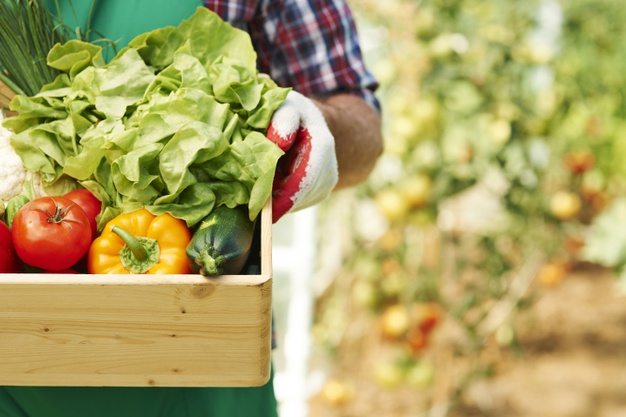 Farmers Day 2020: Are Organic Products Healthy Foods to Buy?