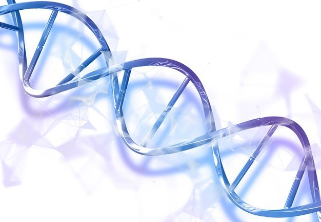 Read the fundamentals of DNA and the role it has to play in your life